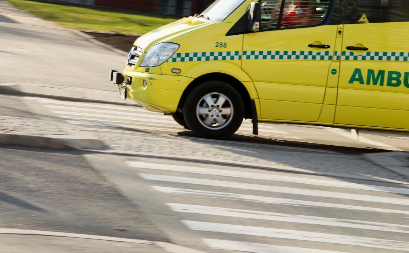 Ulykke: En mann døde i en skogsulykke i Harstad. Foto: Vegard Wivestad Grøtt / NTB scanpix