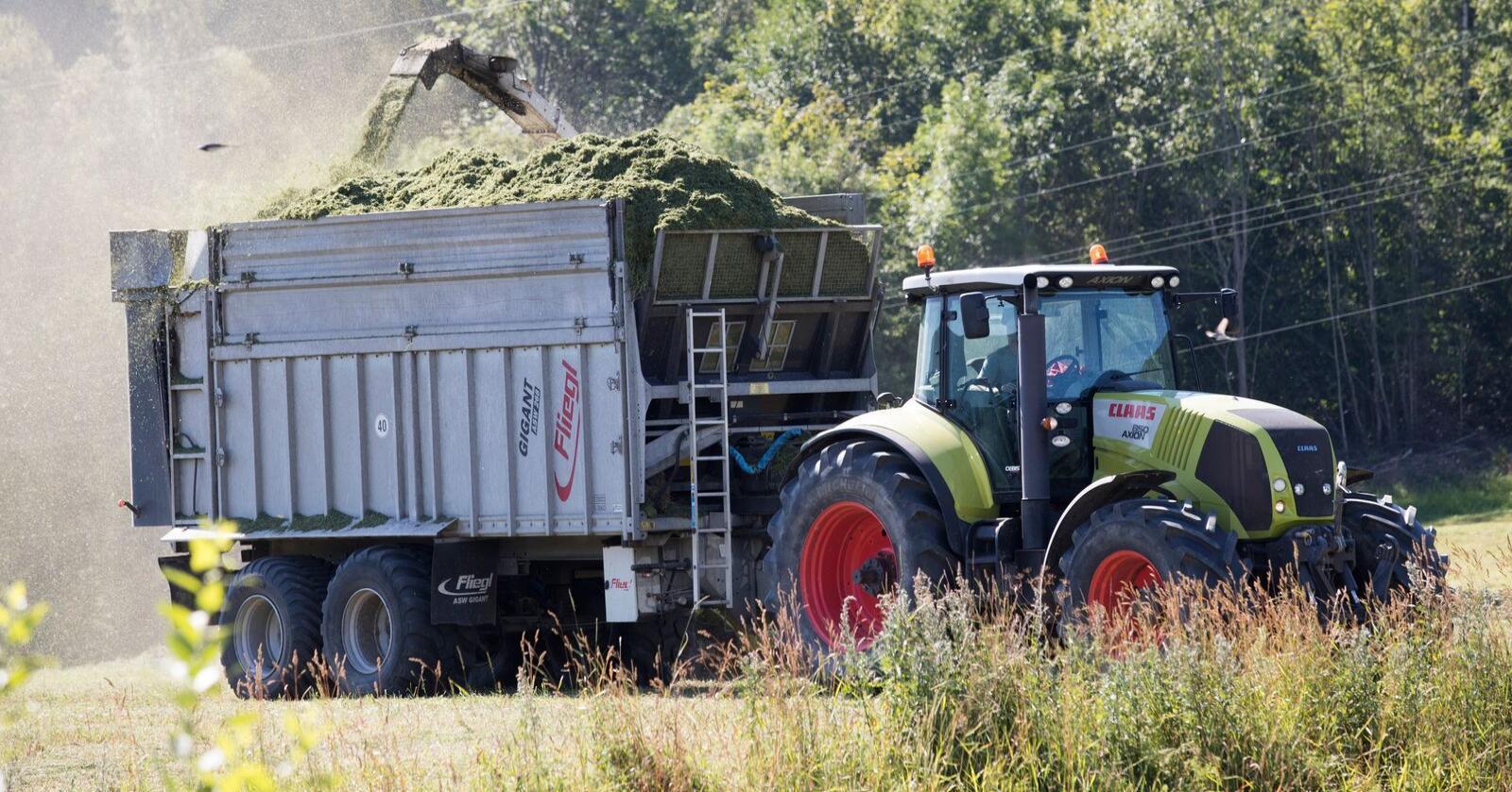 Bøndene på Vestlandet ser mørkare på framtida som jordbrukarar enn bønder i andre delar av landet. Foto: Terje Bendiksby / NTB / NPK