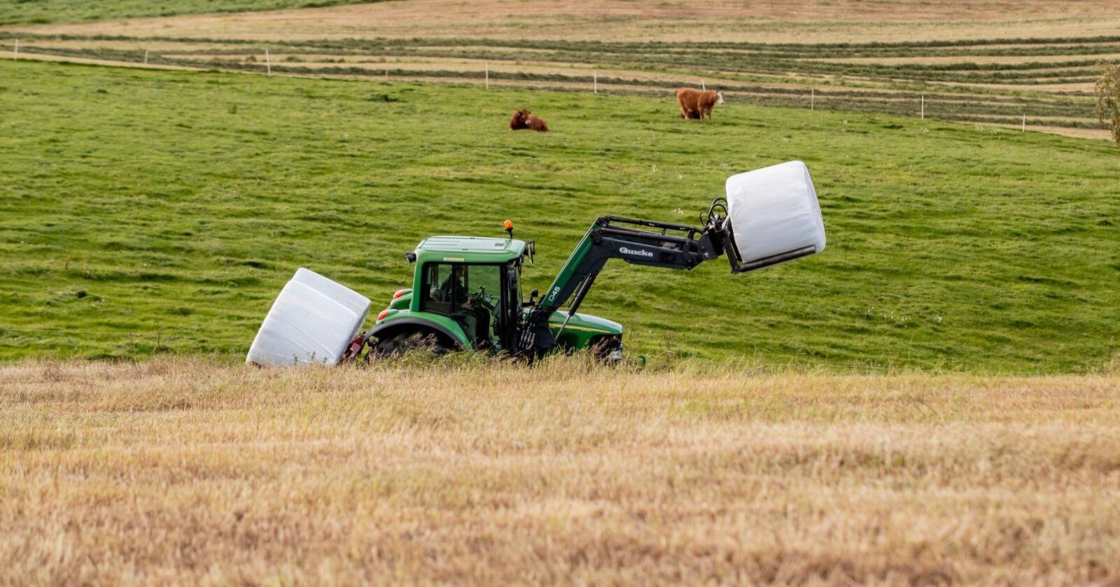 69 prosent av de spurte amerikanerne er positive til landbruk. Illustrasjonsfoto: Stian Lysberg Solum / NTB scanpix