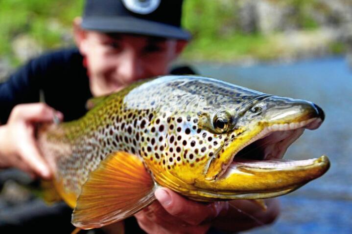 Til Norges eldste folkehøgskole strømmer elever med fiske som hobby. Etter endt skoleår får mange av dem napp i yrkeslivet - og arbeid som sportsfiskeguider.