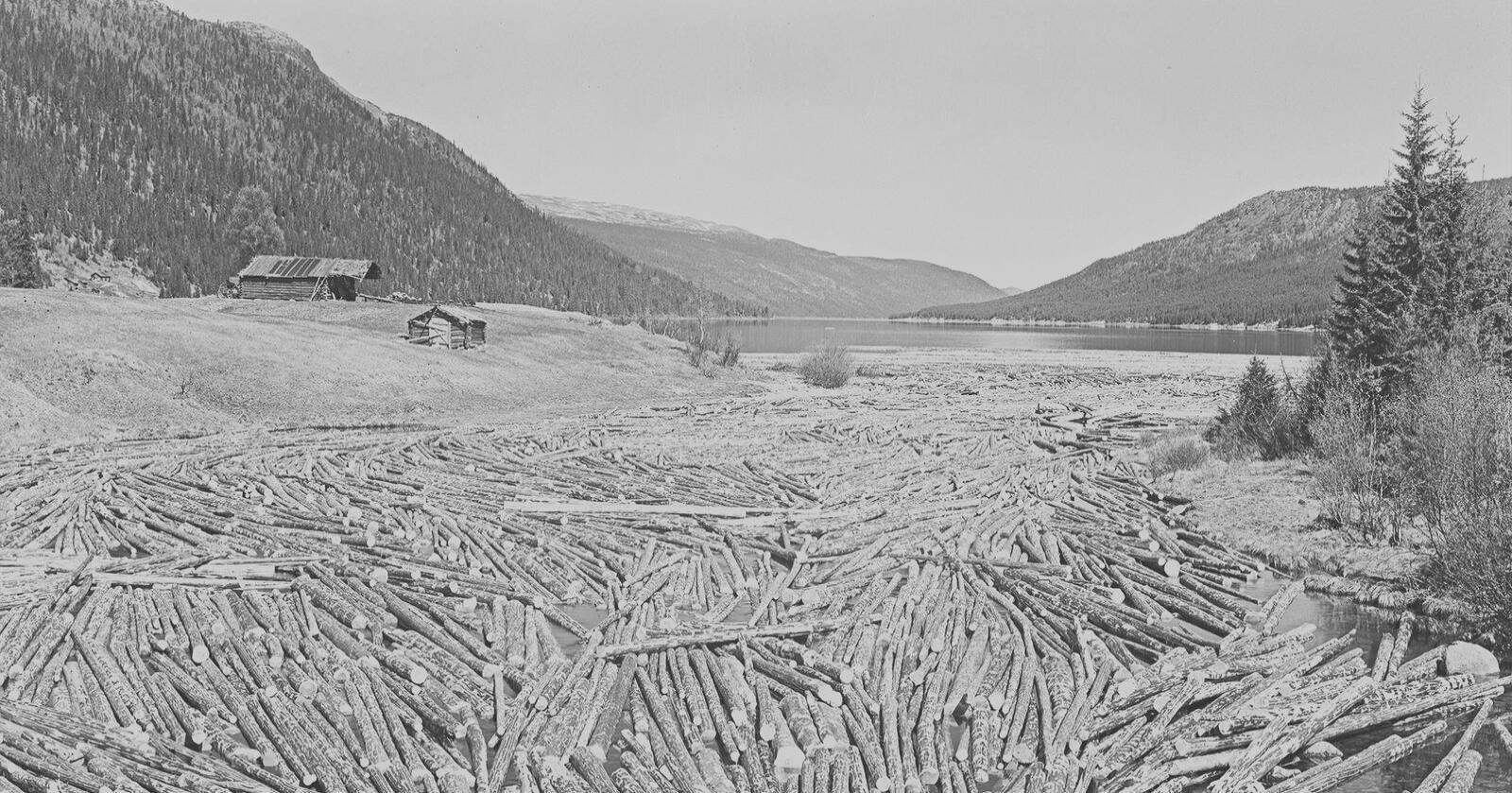 Engeren innsjø i Trysil kommune i Innlandet. Foto: Nasjonalbiblioteket