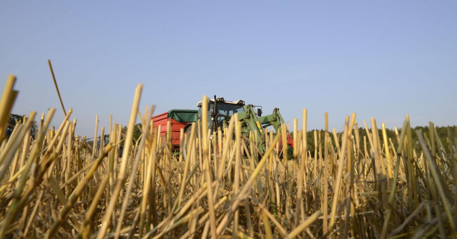 Litt over tre av ti bønder har lønnet arbeid ved siden av gårdsdrifta, kommer det fram i en ny rapport. Foto: Mariann Tvete