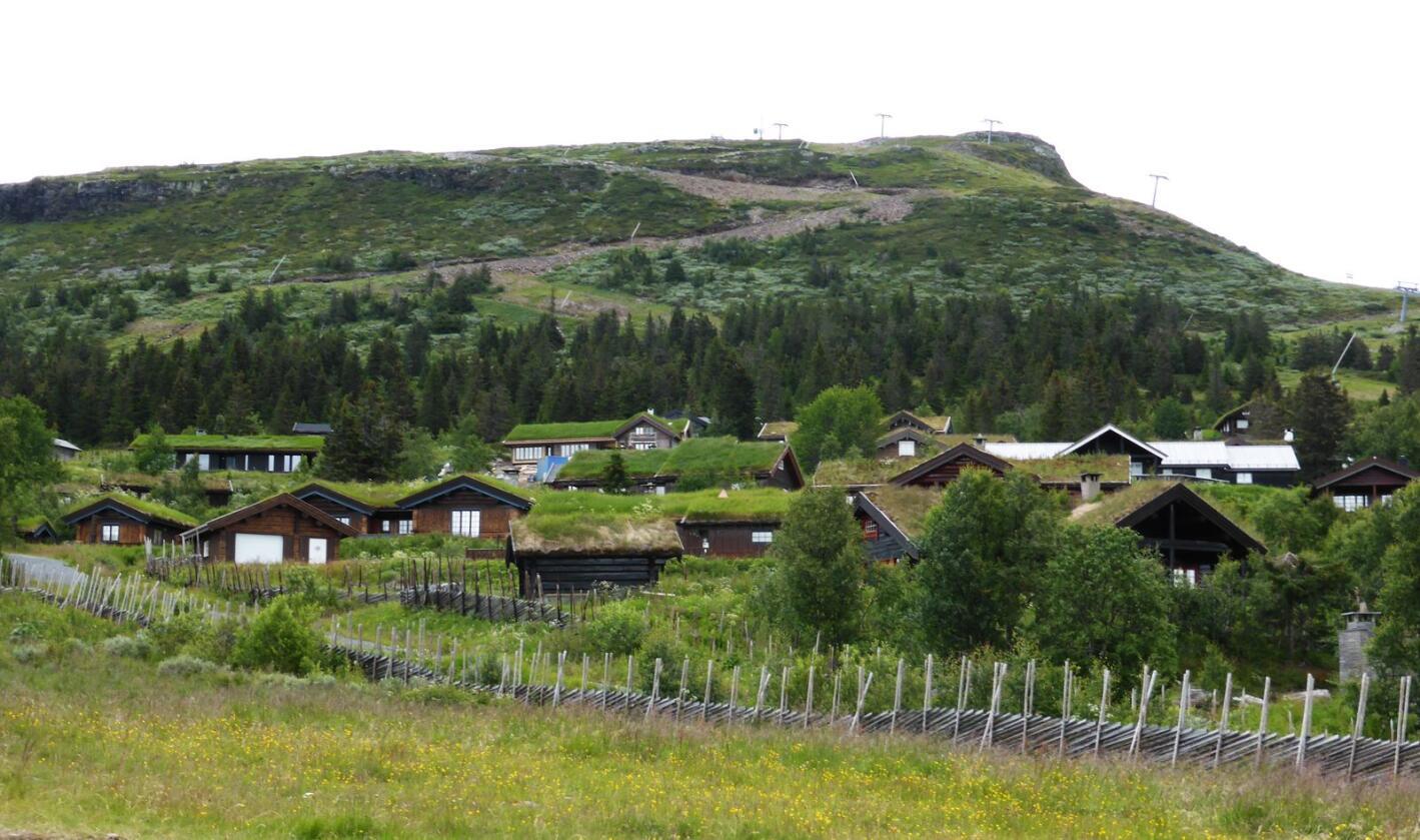 Gausdal setter Norgesrekord i eiendomsskatt. Dette bildet er fra et hyttefelt på Skeikampen. Foto: Berit Keilen / NTB