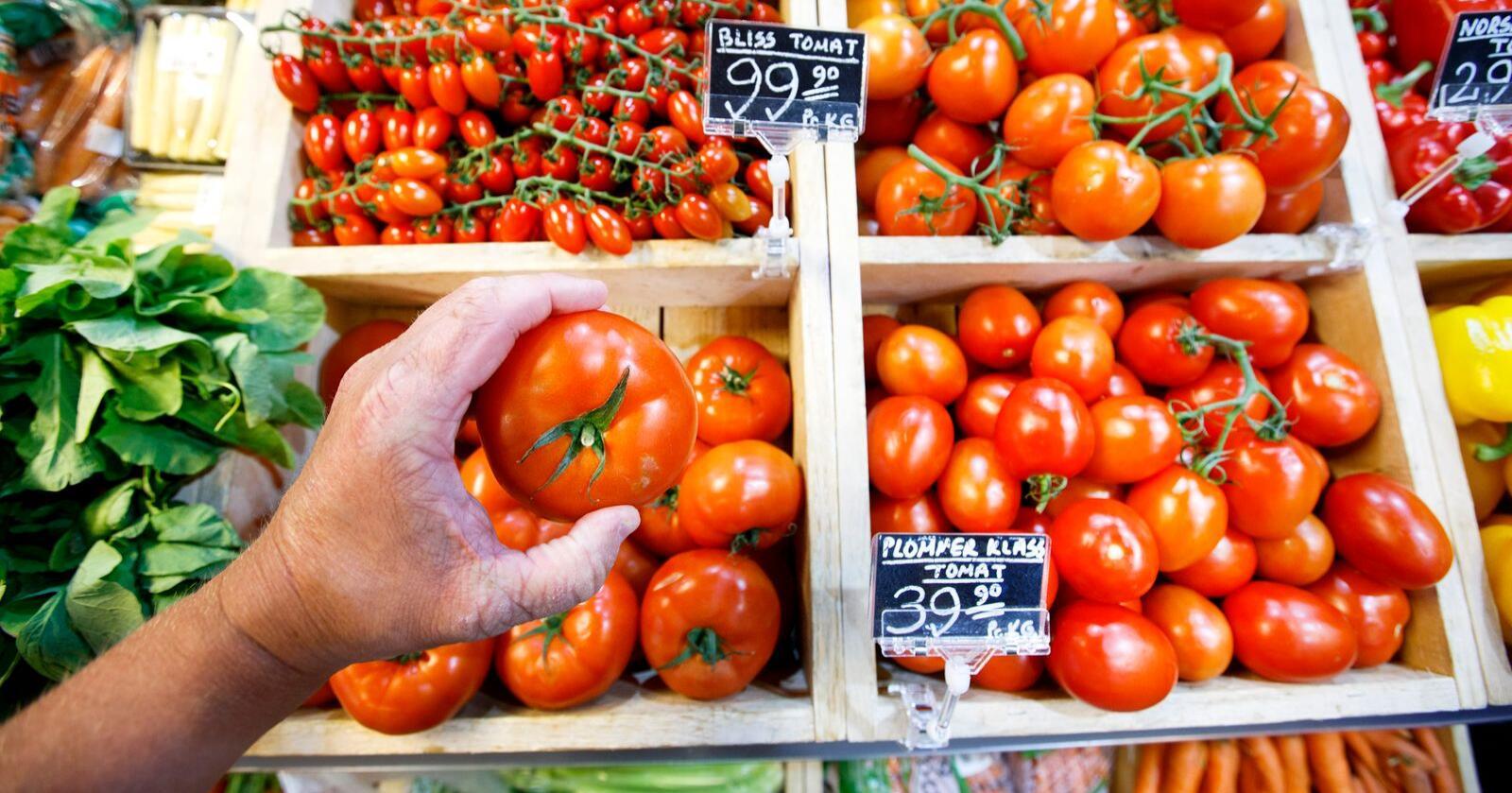 Det ble produsert flere tomater i Norge i fjor enn året før. Foto: Gorm Kallestad / NTB