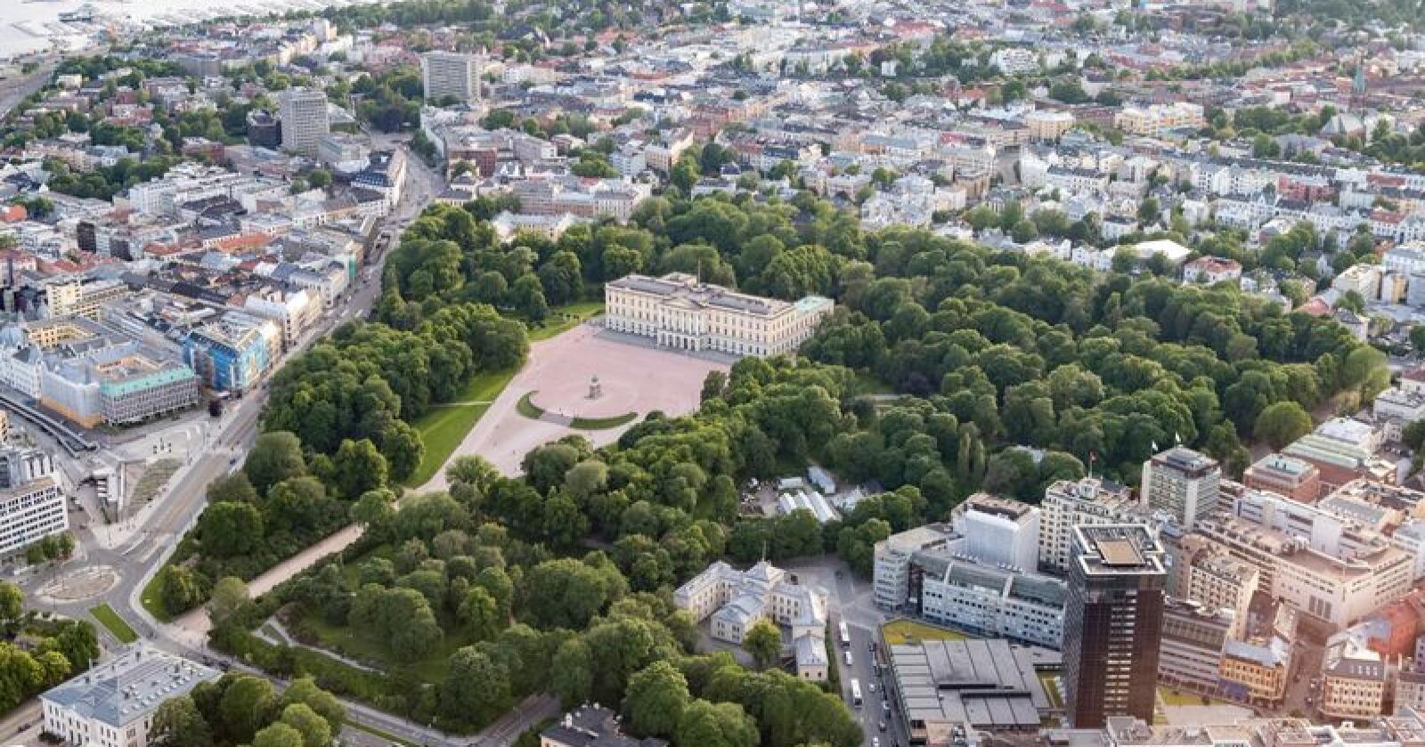 På postnummeret 0260, et lite område mellom Slottet og Frognerparken med til sammen 2500 innbyggere, bor styrelederne i Telenor, Equinor, Petoro og Investinor. I hele Nord-Norge bor det bare to styreledere, som leder styrene i Helse Nord og i Andøya Space Center. Foto: Torstein Bøe / NTB scanpix
