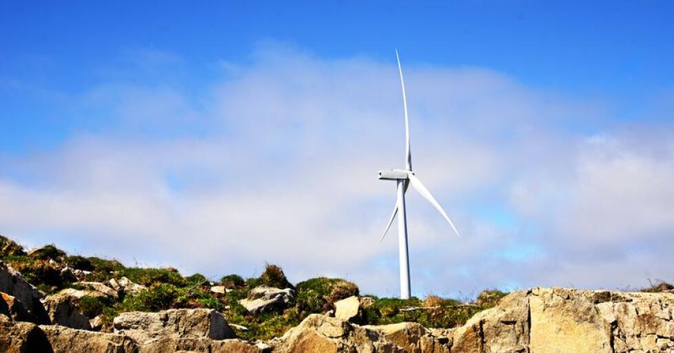 Vindkraft: Utbyggjing av vindkraft har skapa strid. Foto: Siri Juell Rasmussen
