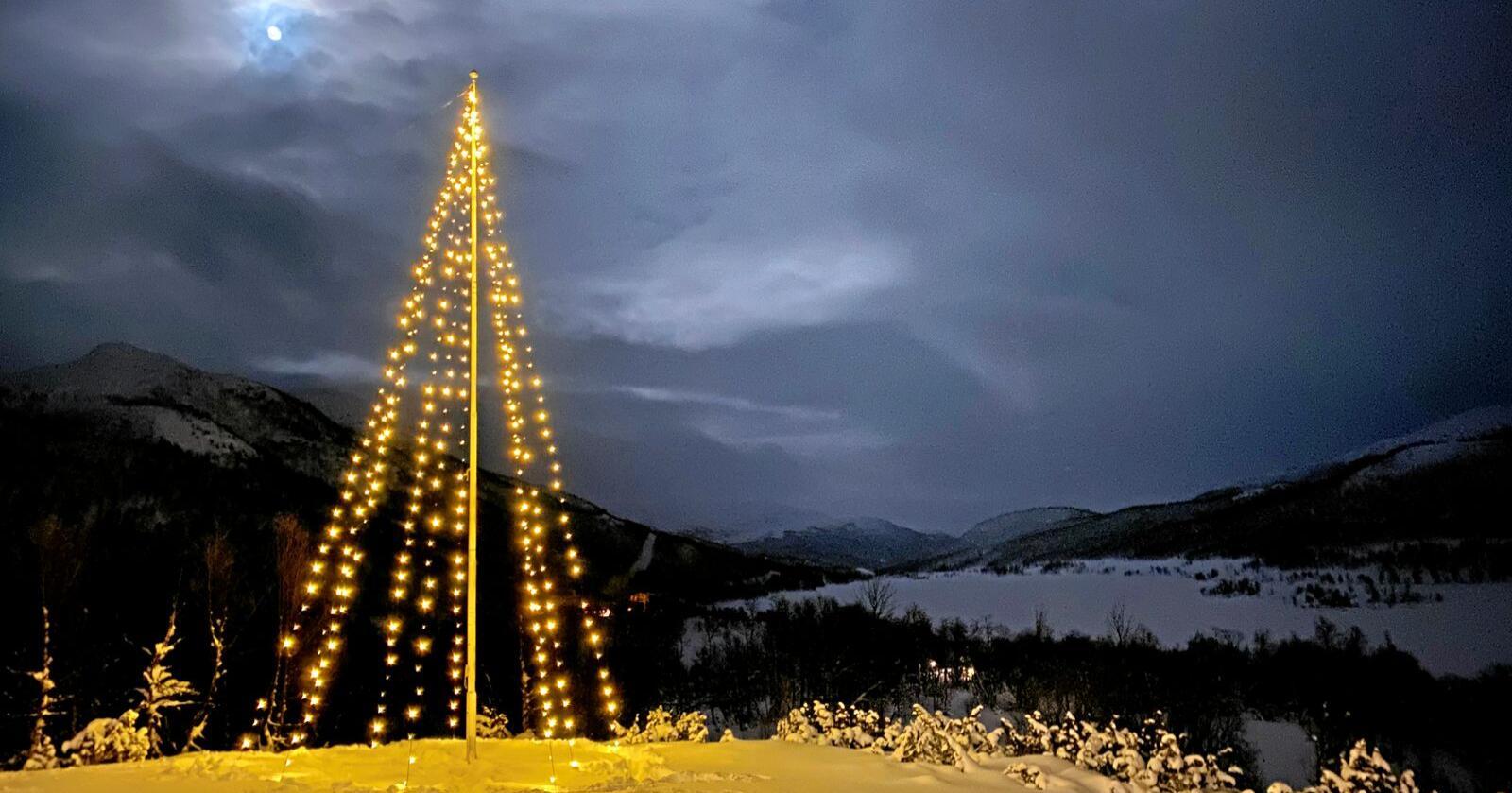 Det er den same snødekte granskogen, tunet og skikken  Foto: Svein Ove Hansli
