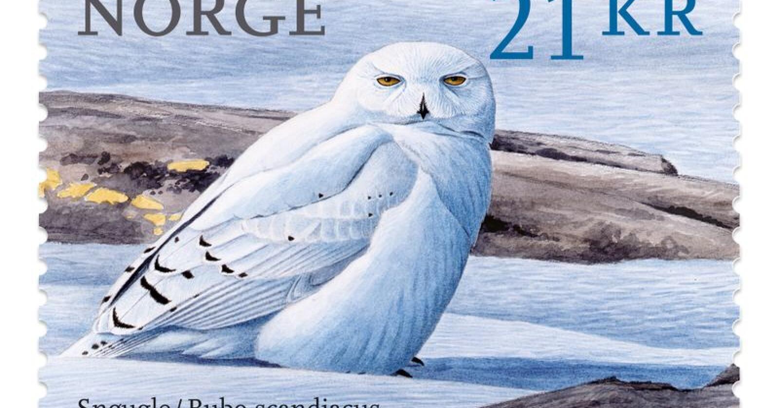 Snøugla måla av Viggo Ree er kåra til det vakraste frimerket i verda gitt ut i 2018. Foto: Illustrasjon / Posten