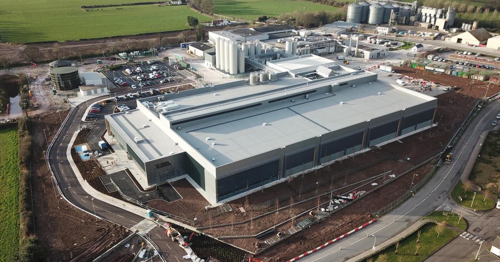 Til Høyesterett: En østersprodusent har fått irsk Høyesterett til å vurdere lovligheten av utslippstillatelsen fra Tines anlegg i Cork. (Foto: Tine)