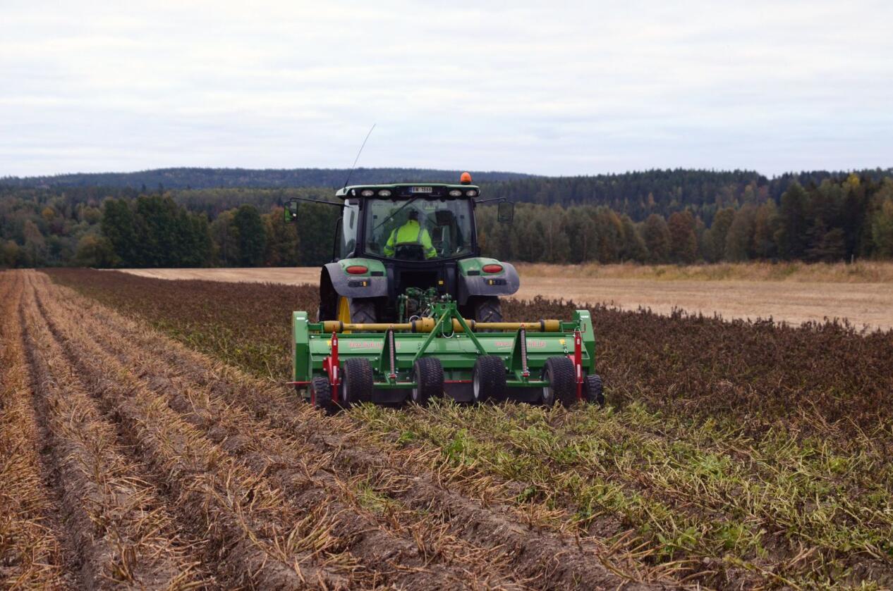 Markdag med Norsk Landbruksrådgiving og Findus i Solør Forsøk med Spotlight