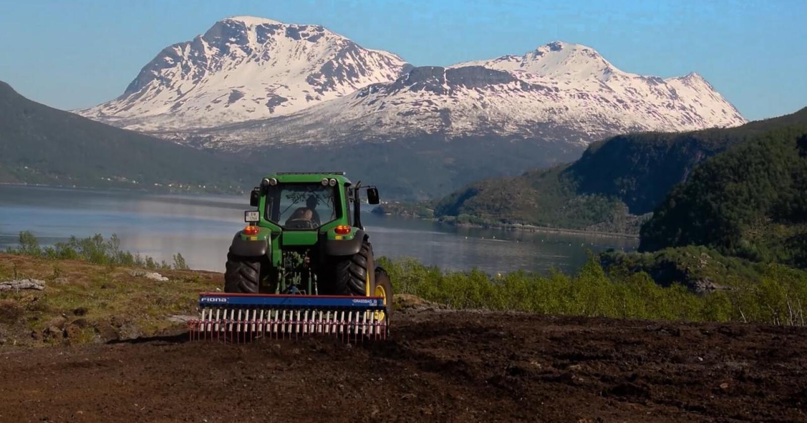 Etterlyser støtte: Troms Bondelag etterlyser finansieringsstøtte til Arktisk landbruk. Bildet er fra Gratangen i Troms. (Foto: Isak S. Sandberg/Daniel B. Johnsen)