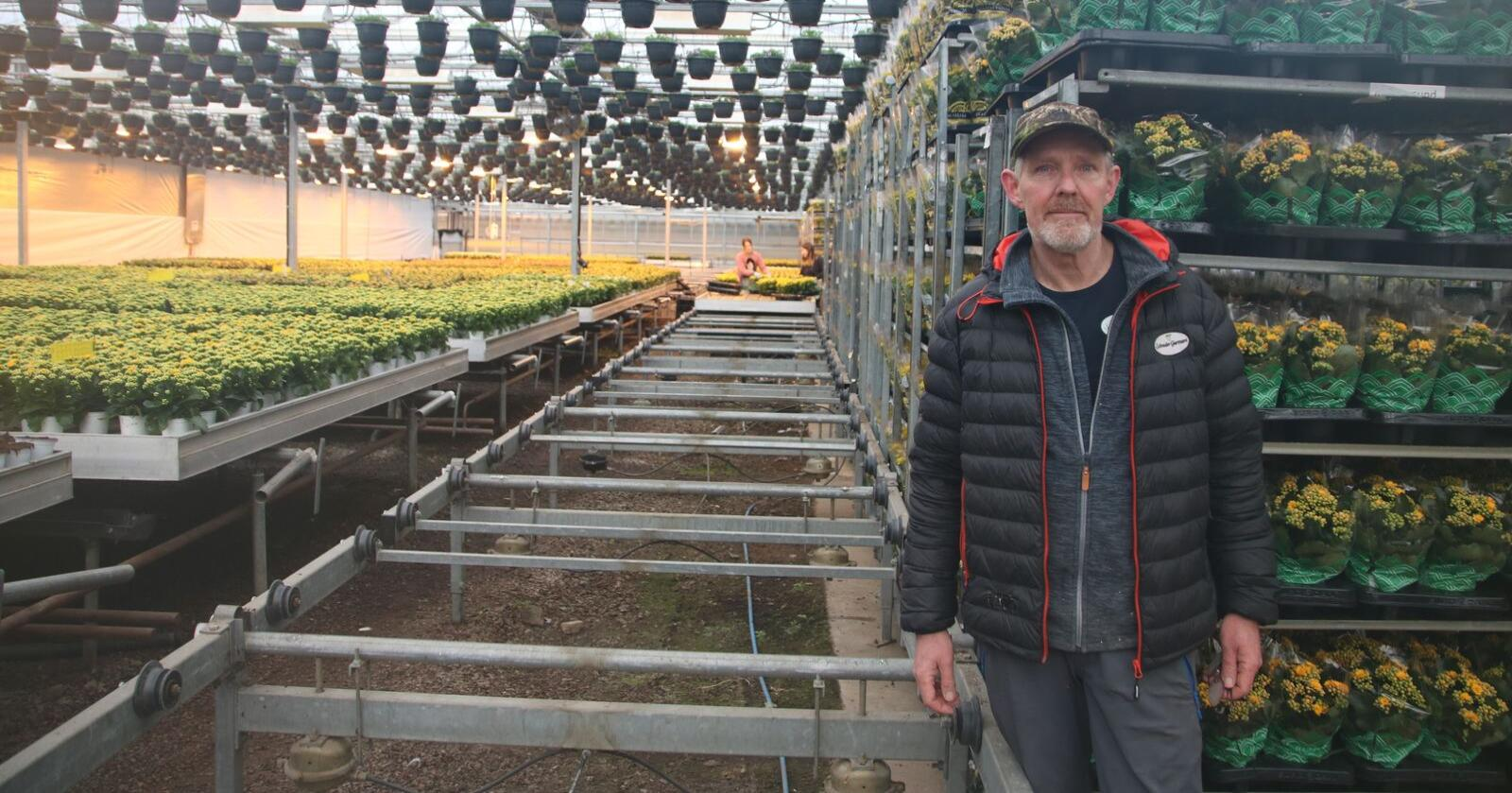 –  Bunnen har falt ut av markedet, sier Eystein Ruud i Schrader Gartneri. De fleste av blomstene som står i trallene bak han vil bli hevet i komposten. Foto: Knut Houge