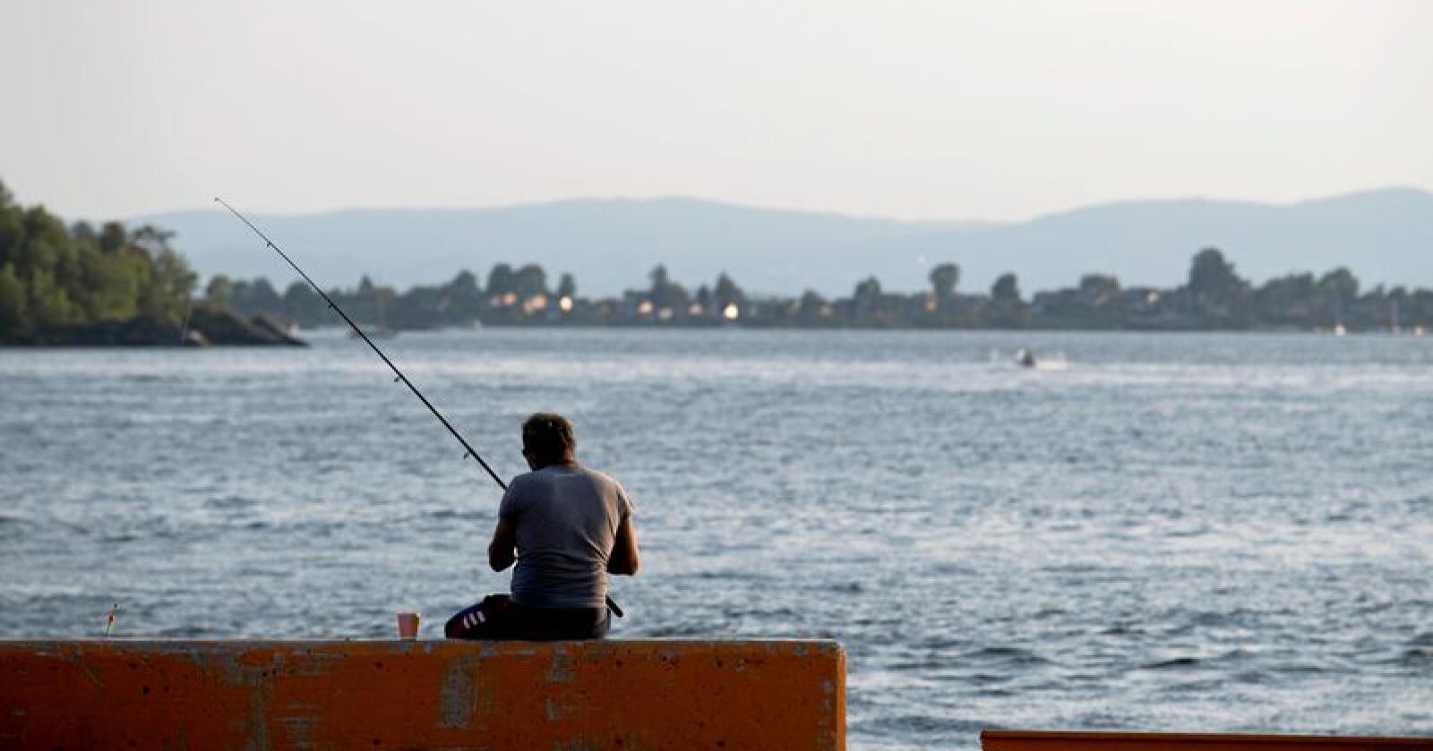 Fiskere som mot formodning får en torsk på kroken, må fra lørdag 15. juni slippe den ut igjen dersom den er fremdeles er levedyktig. Illustrasjonsfoto: Torstein Bøe / NTB scanpix