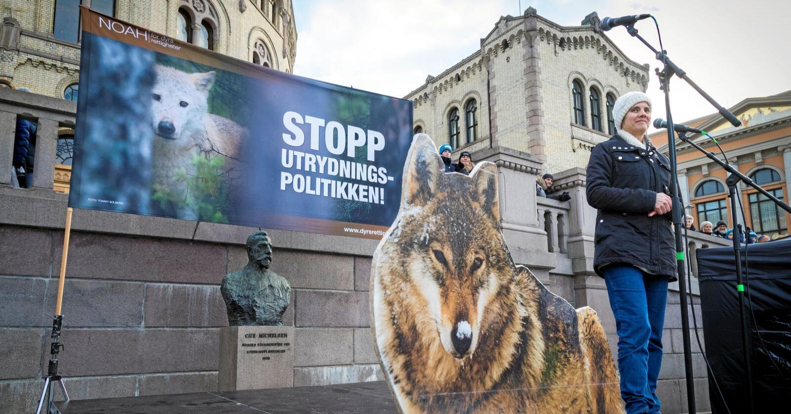 Demonstrasjon: Bak flere pappfigurer av ulv holder Noah-leder Siri Martinsen appell om å bevare ulv og andre rovdyr.  Noah er ofte i konflikt med husdyrbønder. Foto: Heiko Junge / NTB scanpix