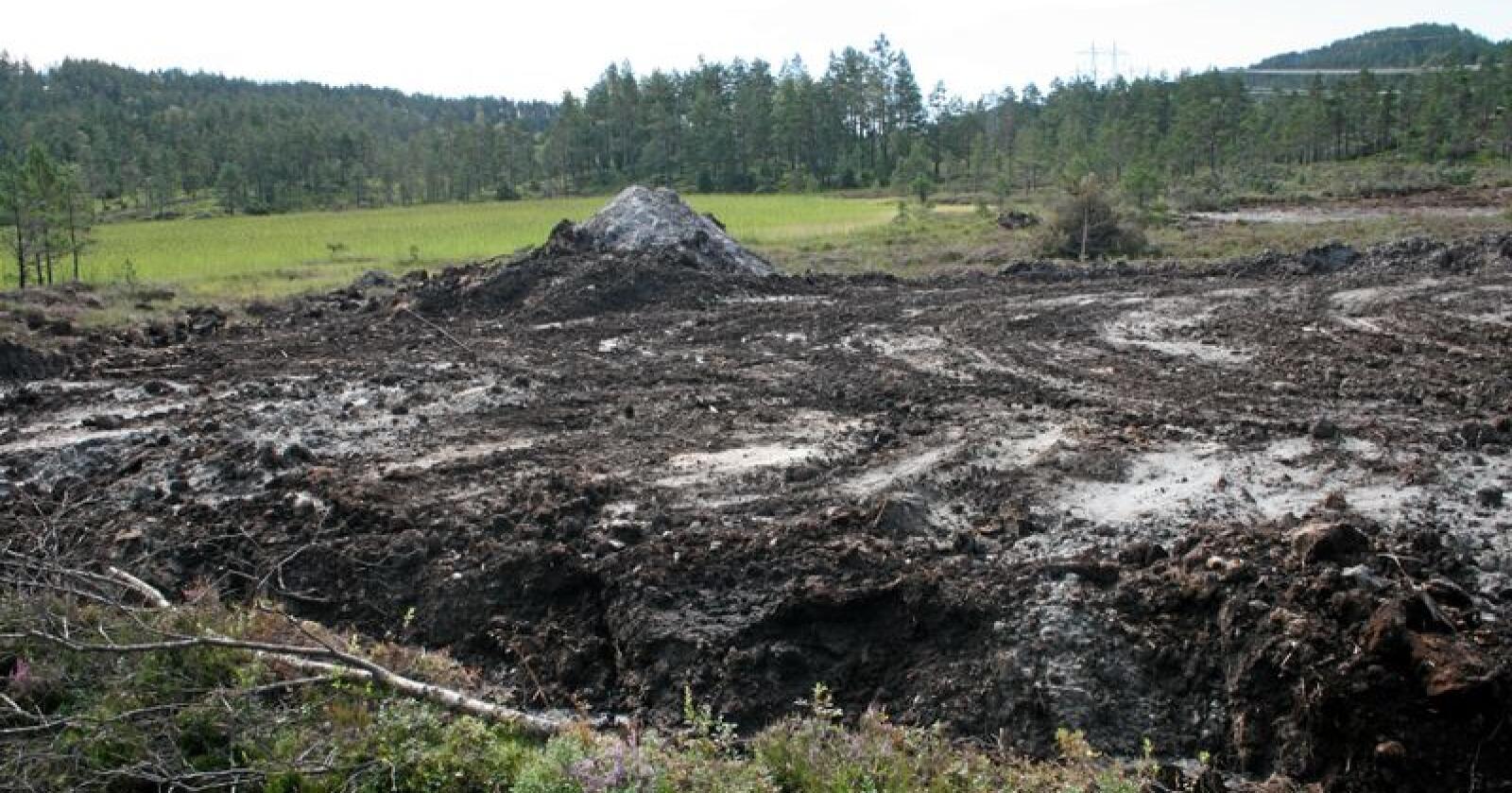 Forbud: Å la være å dyrke opp myr vil avlaste landbruket for andre og dyrere klimatiltak. Foto: Bjarne Bekkeheien Aase