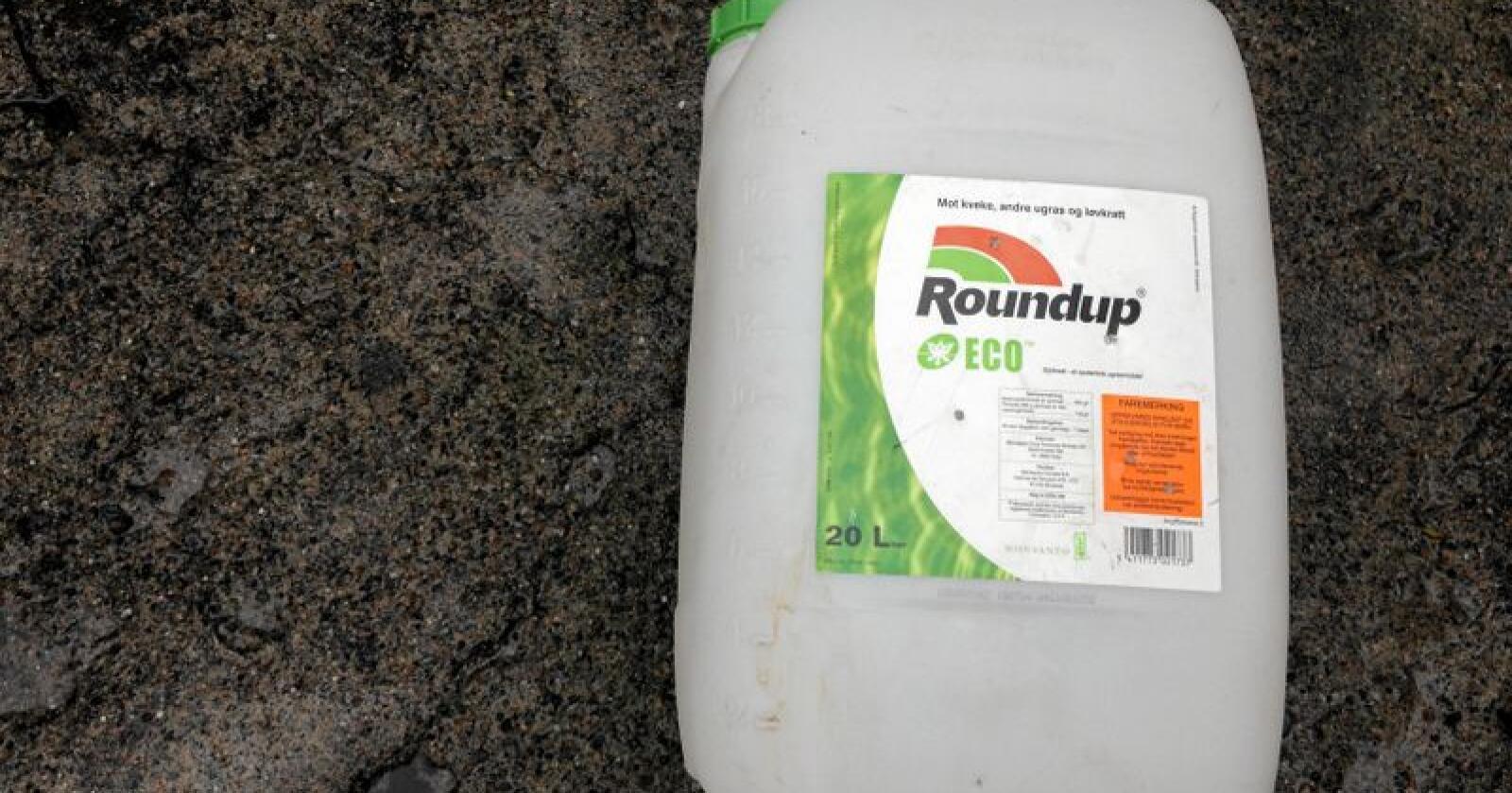 Glyfosat er det mest brukte virkestoffet plantevernmidler i Norge. Her en dunk Roundup, som er det mest kjente glyfosat-produktet. Foto: Svein Egil Hatlevik