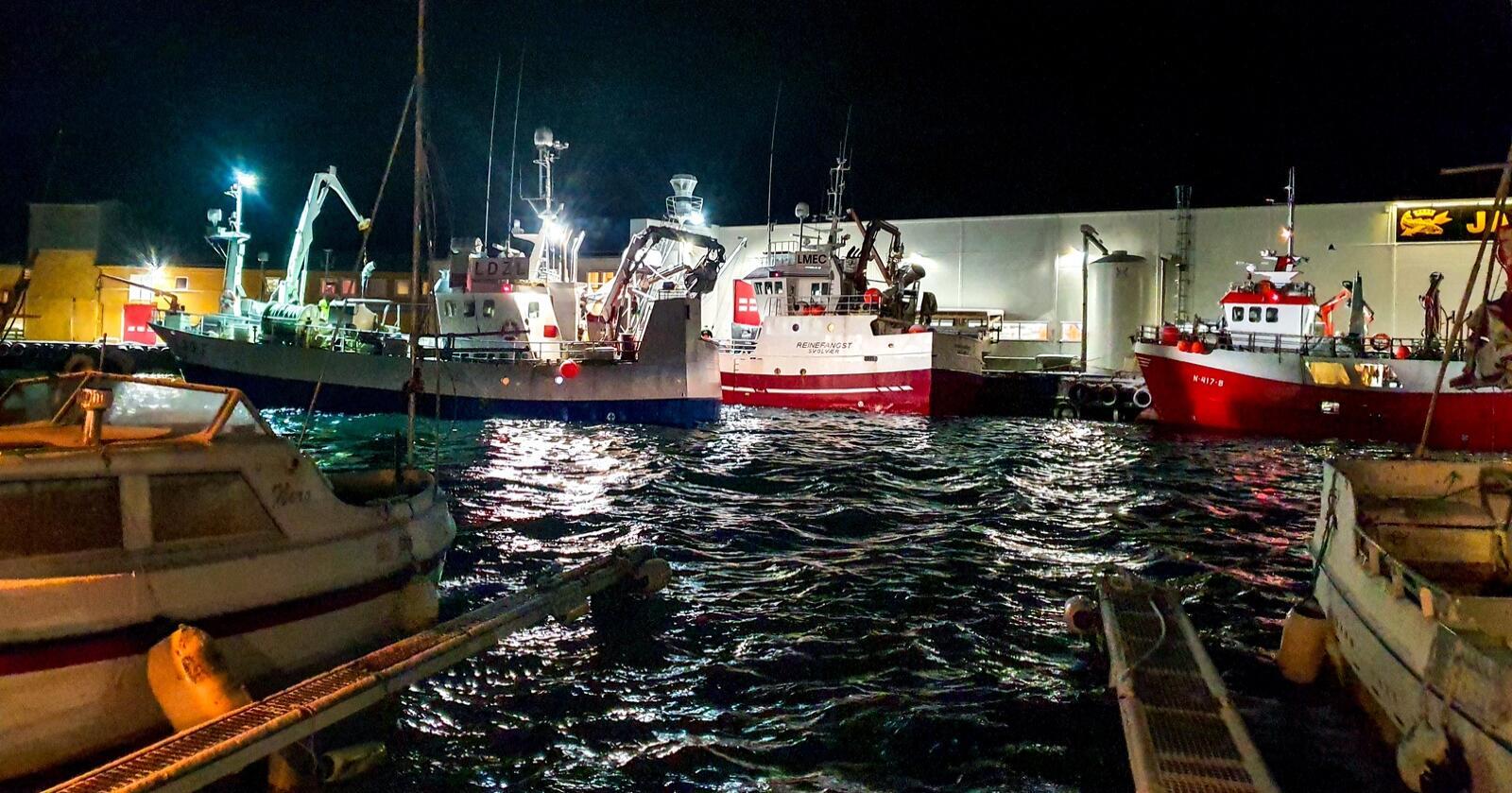 Det blir ingen ny fiskerihavn i Andenes ut fra regjeringens forslag til statsbudsjett. Foto: Eskild Johansen