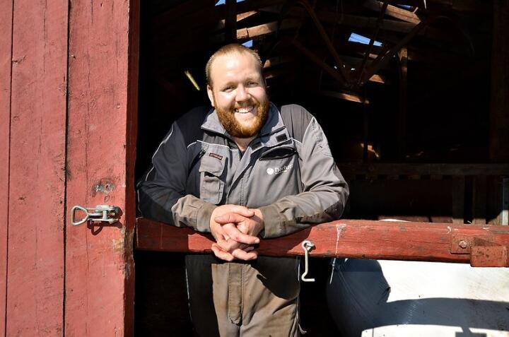 Tommy Sivertsen Jakobsen driver med ammeku, og melkeproduksjon i samdrift.  Foto: Liv Jorunn Denstadli Sagmo