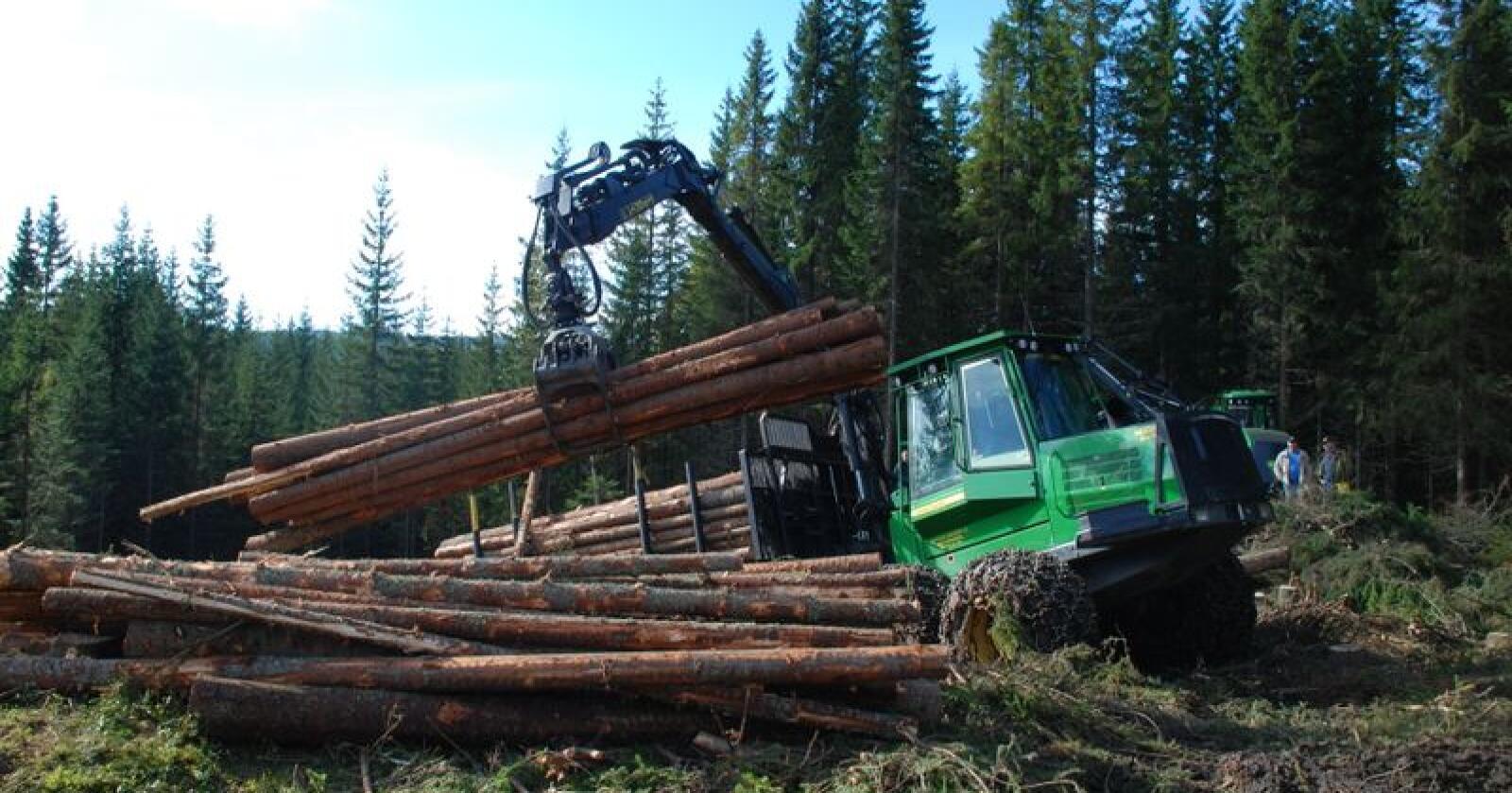 """Landbruks- og matministeren mener de nye midlene legger godt til rette for at skogen skal kunne bidra i """"det grønne skiftet"""" framover. Foto: Karl Erik Berge"""