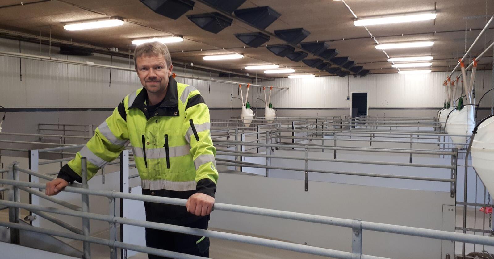 Det er tomt i tre av rommene i grisehuset til Jostein Sørhus i Vindafjord kommune i Rogaland. I det fjerde har han 130 slaktegris, som han skal slakte i oktober. (Foto: Privat)