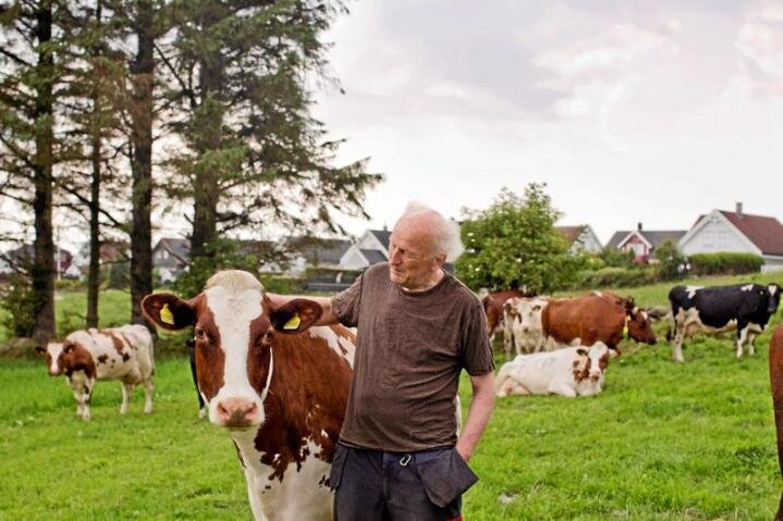 Driver gård med mange naboer. Svein Rygg forteller at noen av naboene  ikke har anlagt hekk foran huset, sånn at de får følelsen av en stor tomt når den glir over i den grønne åkeren. Foto: Solfrid Sande