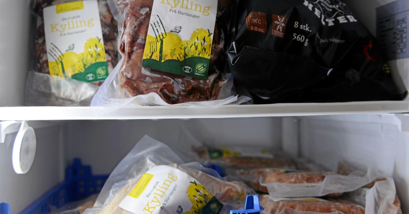 Helt vanlig mat: Flere øko-dyr spiser kunstgjødslet, sprøytet fôr. Foto: Mariann Tvete