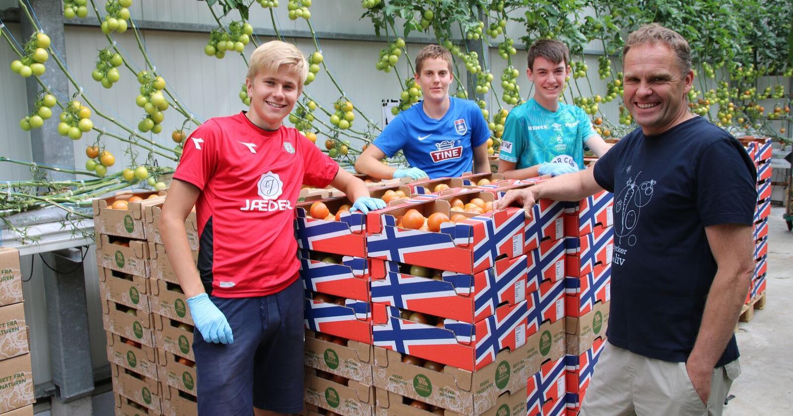 Ola Sunde fra Orre på Jæren dyrker vanlige runde tomater, og er SKP (sentral kulturansvarlig produsent) for ca 35 produsenter i Gartnerhallen. Foto: Lars Olav Haug
