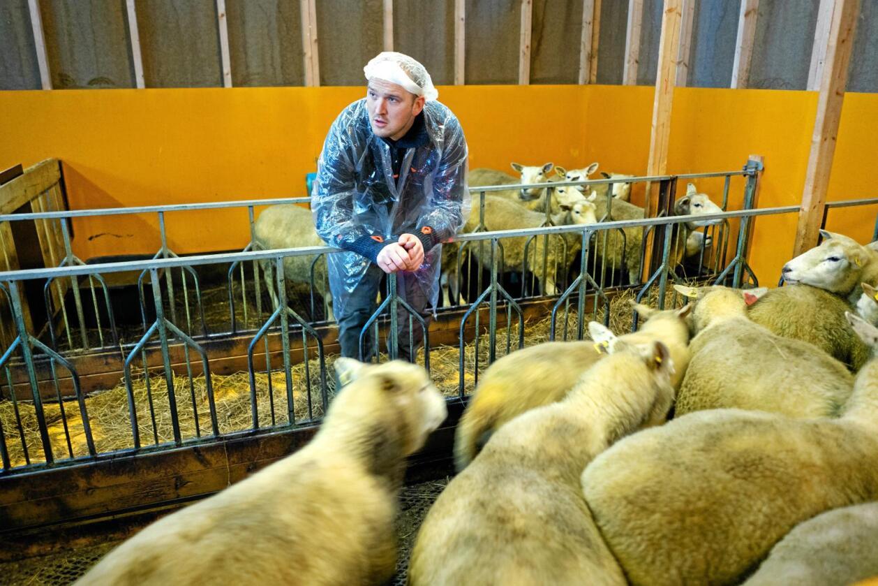 Avviser: Landbruksminister Jon Georg Dale vil ikkje bremse støtta til nye fjøs. Foto: Ketil Blom Haugstulen