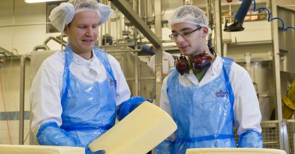 Interessen for oster med mer smak øker, og cheddar er blant ostene som stadig flere nordmenn får øynene opp for. Bilder er fra pizza-produksjonen på Stranda. (Foto: Tine)