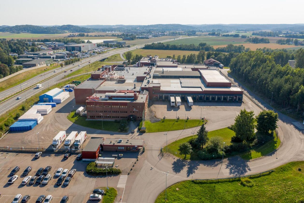 Her hos Nortura Tønsberg skal griseslaktingen på Østlandet samles. Foto: Nortura-medlem