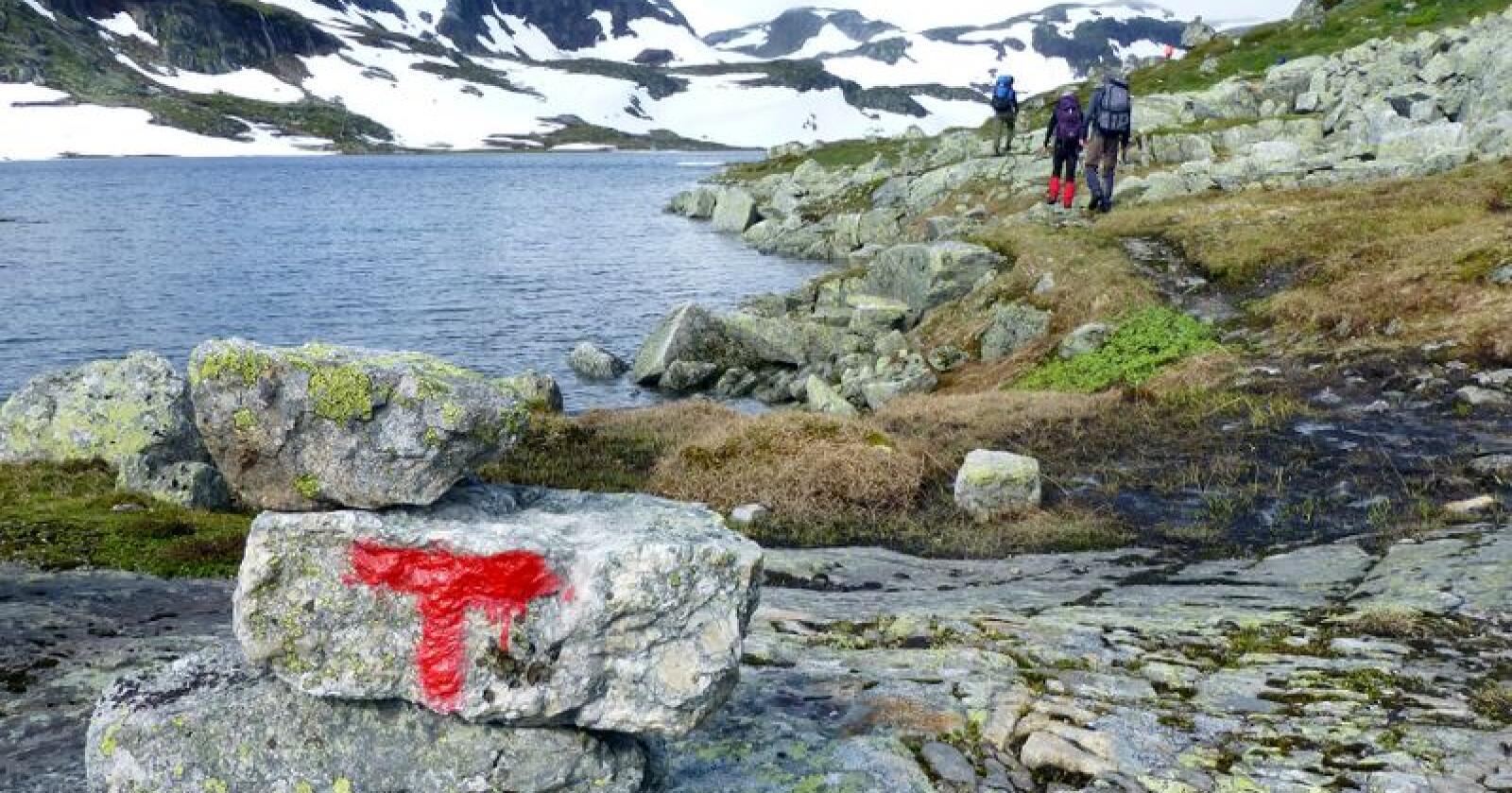 Turistforeningen viser vei i fjellet, men ikke alle gjør opp etter seg når de har overnattet på turlagenes hytter. Foto: Paul Kleiven / NTB scanpix