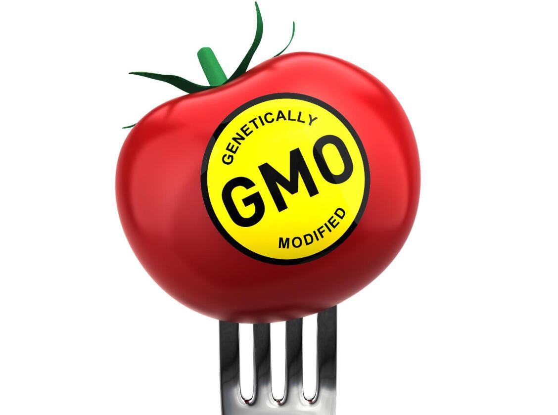 Norske bønder kommer ikke til å introdusere GMO i norsk planteproduksjon, om ikke forbrukerne ber om det. Foto: iStock