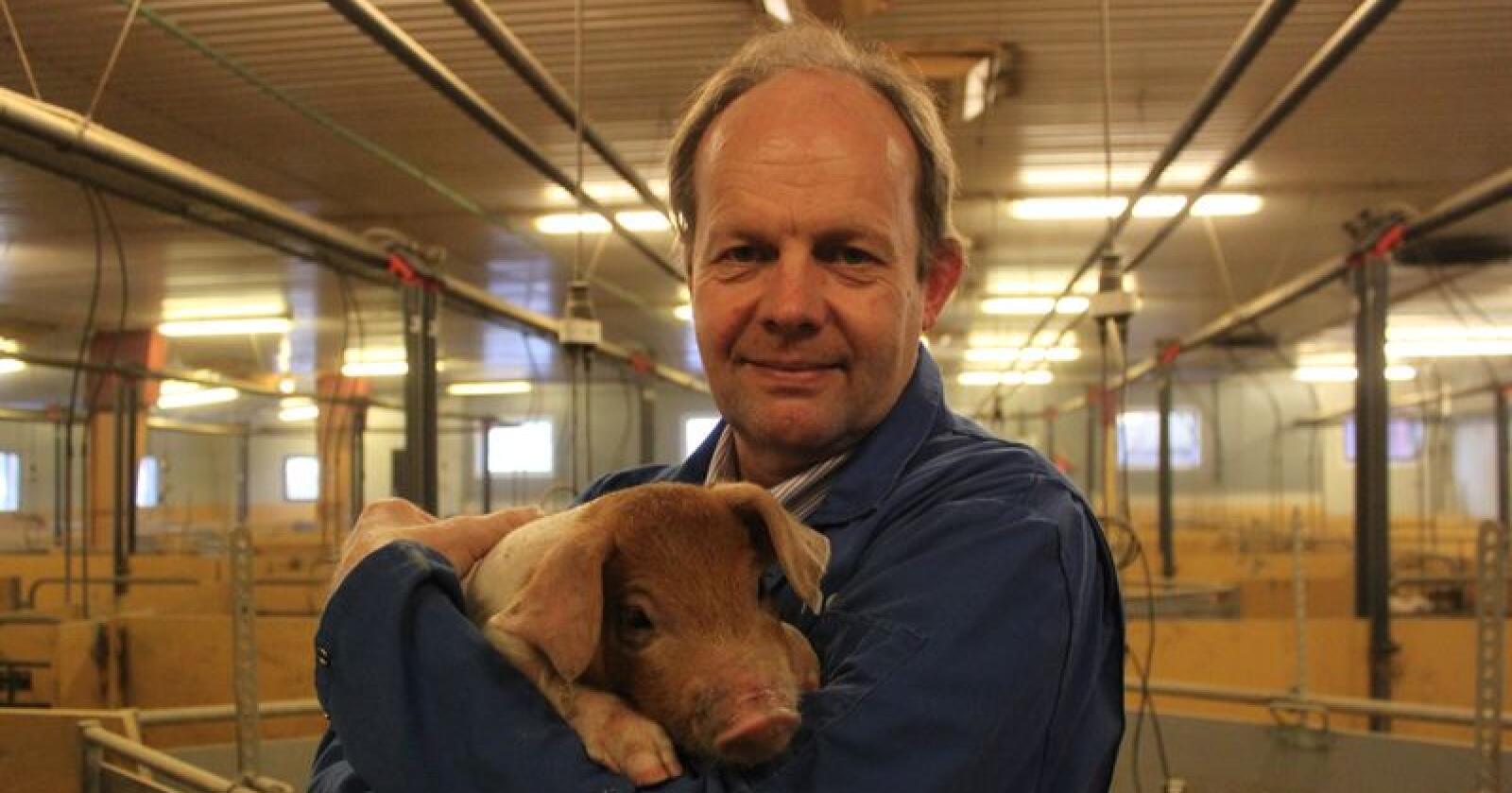 Knut Haugland er smågrisprodusent i Bø i Telemark. Han etterlyser større innsats fra Bondelaget til svin og andre produksjoner. (Foto: Norsk Landbruk)