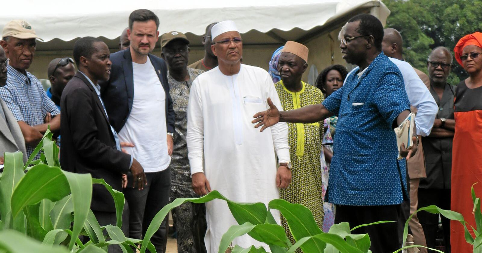 Landbruksprosjekt: Dag-Inge Ulstein i Mali, her sammen med Malis landbruksminister Moulaya Ahmed Boubacar (i hvitt), besøkte et norskstøttet prosjekt. Foto: Ane Haavardsdatter Lunde / Utenriksdepartementet