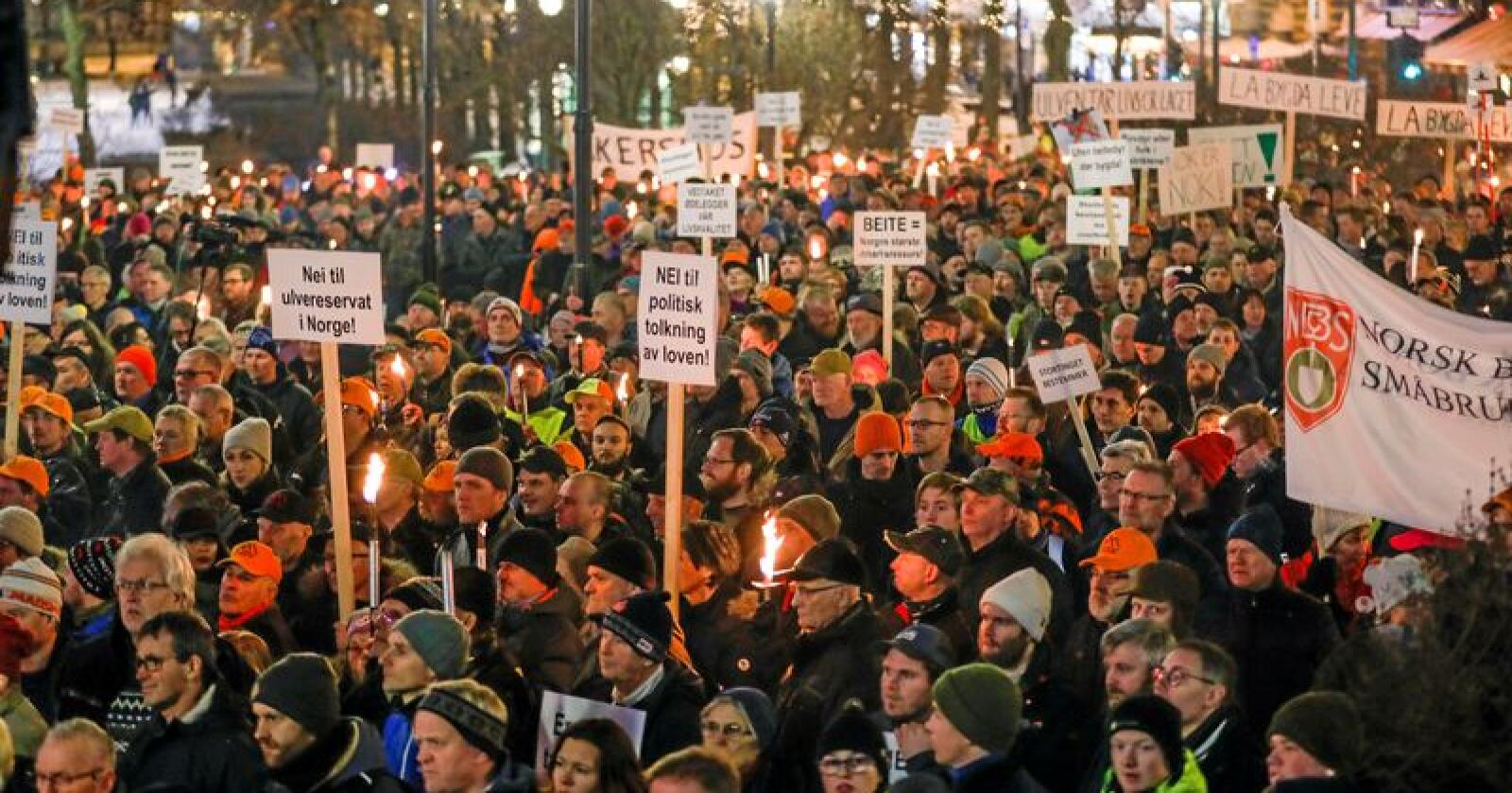 Ulvedemonstrasjon: Man finner neppe mange andre demonstrasjoner for et stortingsvedtak, skriver Gunnar Gundersen. Her fra en demonstrasjon i Oslo i januar 2019. Foto: Cornelius Poppe / NTB scanpix