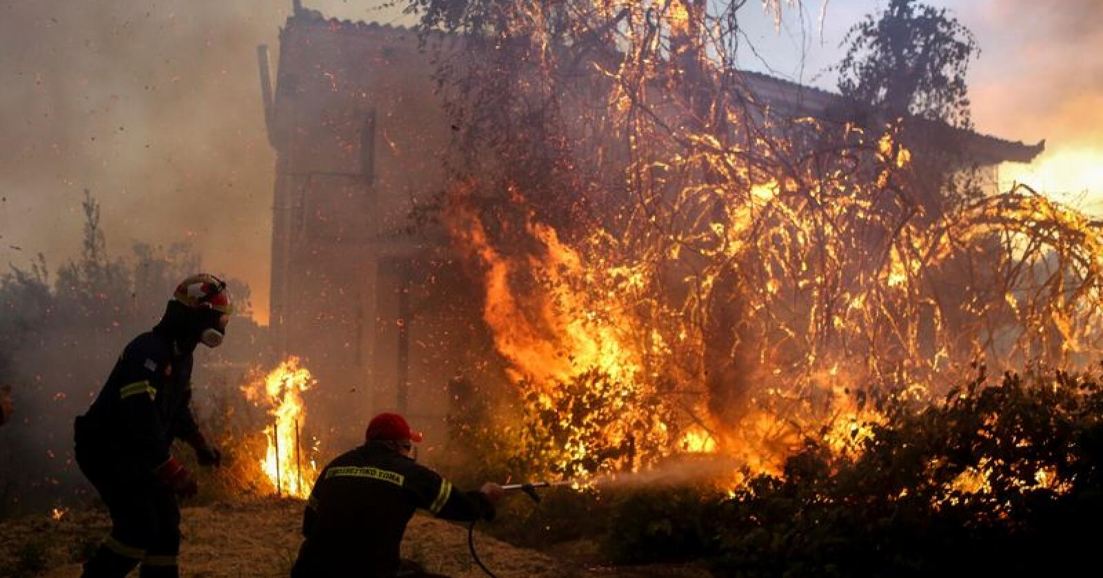 Brannmannskaper kjemper mot flammene i landsbyen Agrilitsa på den greske øya Evia tirsdag. Foto: Dimitris Kapadais / Intime News / AP / NTB scanpix
