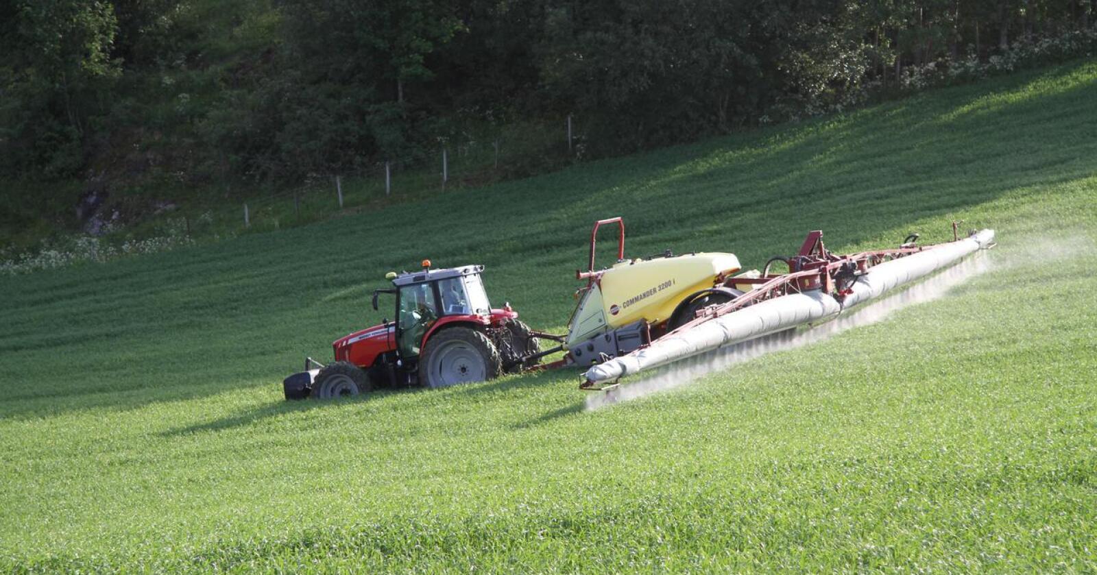 BEGRENSE: Et av prinsippene for integrert plantevern er at man skal begrense bruken av plantevernmidler til færrest mulig behandlinger og minst mulig dose. Arkivfoto: Norsk Landbruk