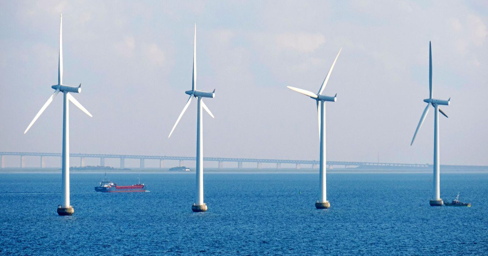 Havvind bør etableres i andre markeder enn i Norge, mener Statkraft, slik som her i Danmark. Foto: Paul Kleiven / NTB scanpix