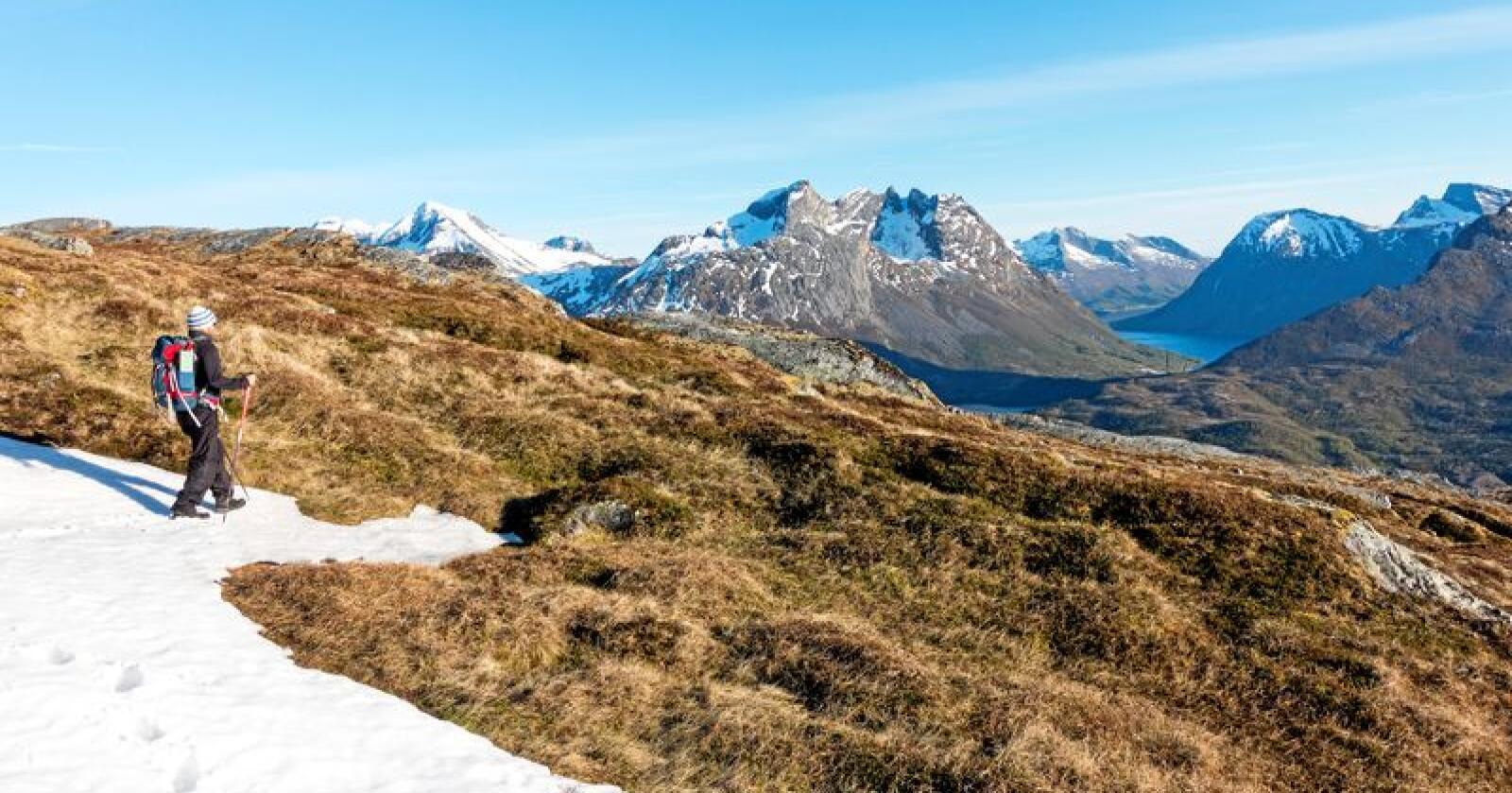 Ut på tur: Ingen bruker allemannsretten mer enn bønder, skriver leserbrevforfatteren. Foto: Gorm Kallestad / NTB Scanpix