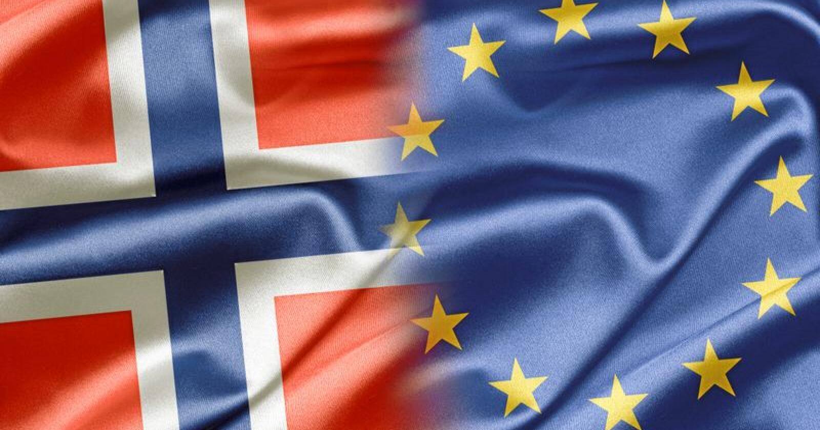 Norway and EU Foto: Ruskpp Ruskpp/Mostphotos