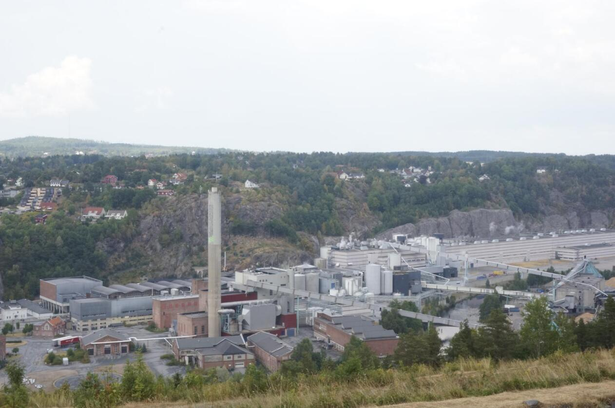 Truet: Norske Skog Saugbrugs i Halden er en av to gjenværende fabrikker som sluker det tømmeret sagbrukene ikke vil ha. Foto: Mariann Tvete.