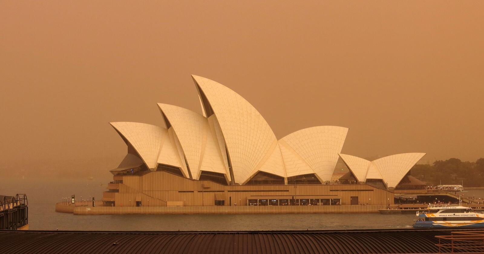 Australia slapp ut mer CO2 i løpet av skogbrannsesongen enn de normalt gjør i løpet av et år. Foto: Peter Talos / NTB scanpix