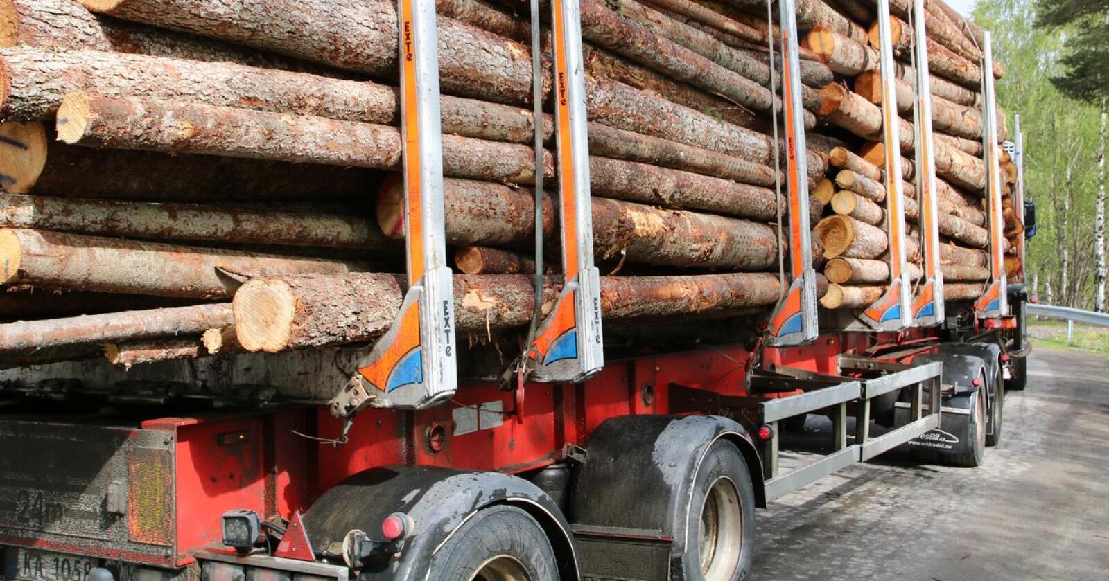 Transport: Frp vil prioritere tiltak som er viktige for skognæringen i forhandlingene om Nasjonal transportplan (NTP), konstaterer Norges Skogeierforbund. (Foto: Karl Erik Berge)