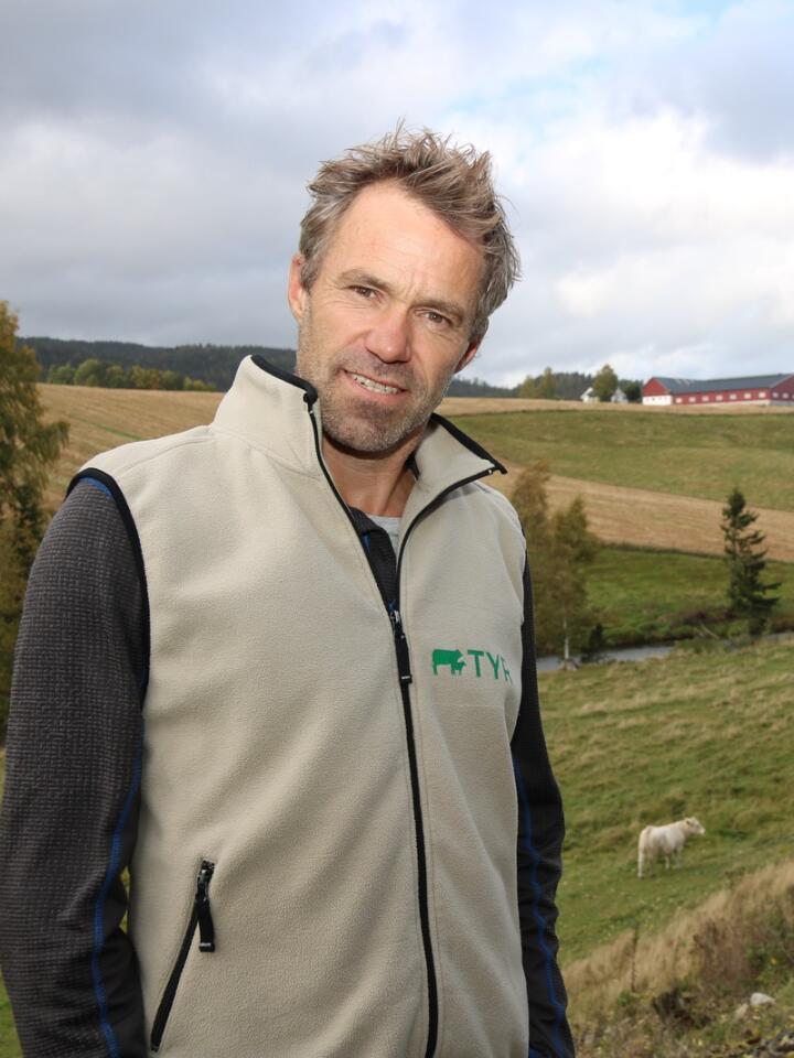 RAVINER: Hos Per Øivin Sola går halvparten av ammekyrne på utmarksbeite i ravinedalene rundt gården, mens den andre halvparten går på skogsbeite. Foto: Dag Idar Jøsang
