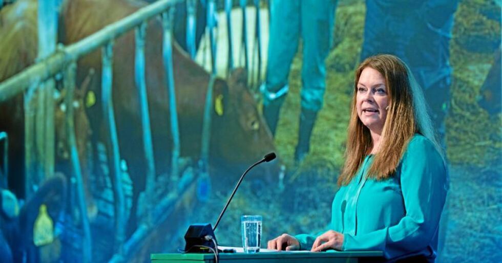 Styreleder Anne Jødahl Skuterud i Felleskjøpet Agri skriver at det må jobbes for å øke markedet for norsk mat. Foto: Vidar Sandnes