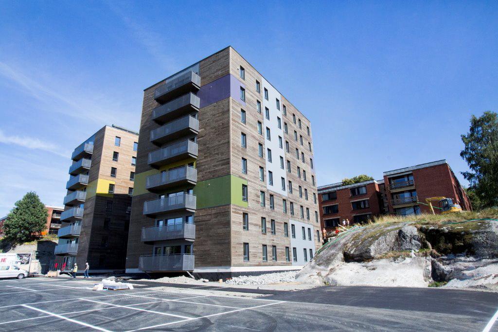 Tankesprang: Studentboligene på Ås er bygd med østerriksk massivtre. Norge burde bygd studentboliger i Østerrike. Foto: NMBU