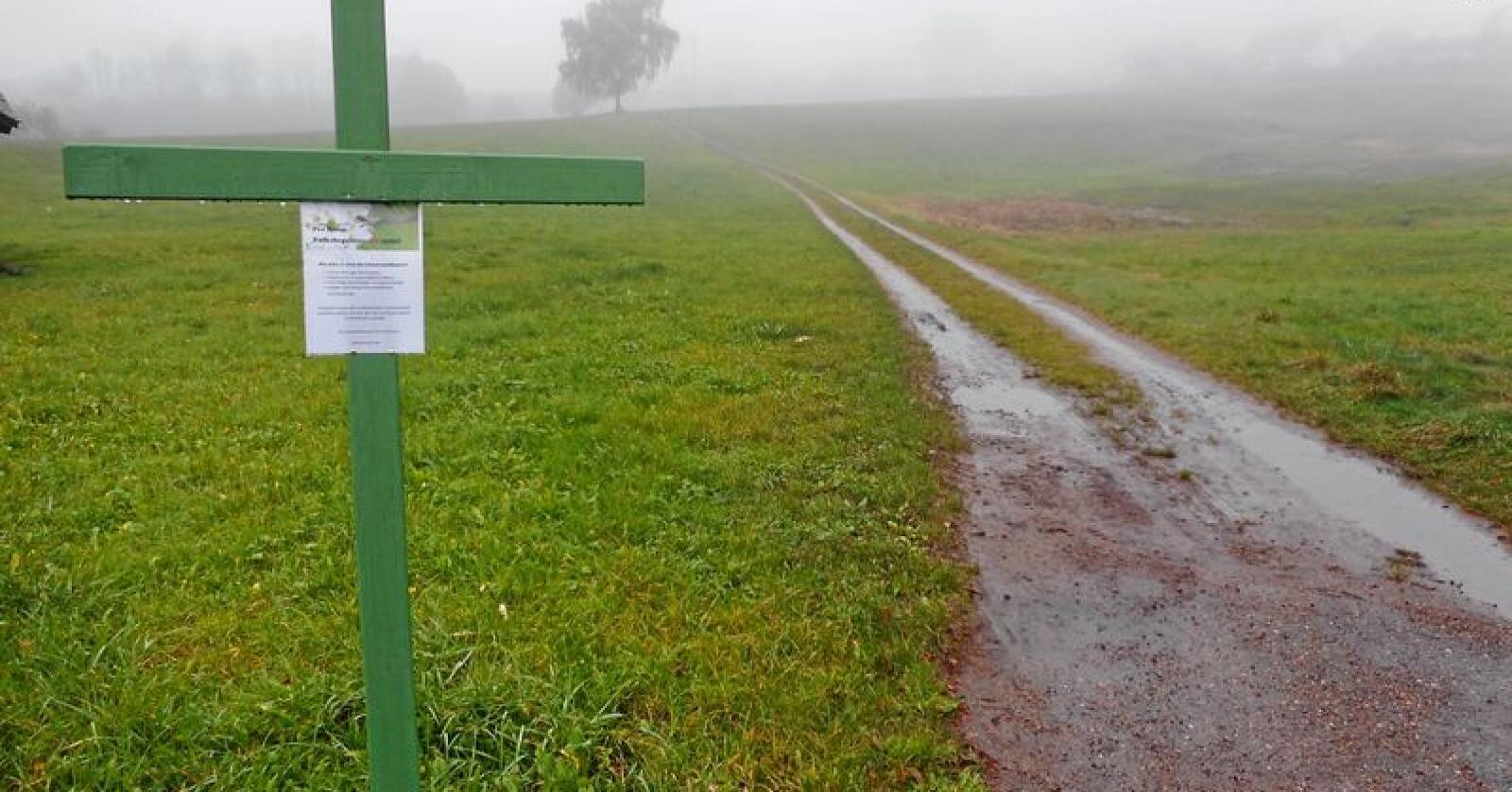 Grønne kors på tysker jorder: I protest mot miljøtiltak i landbruket. Foto: Antonio Pisacreta / Ropi / NTB scanpix