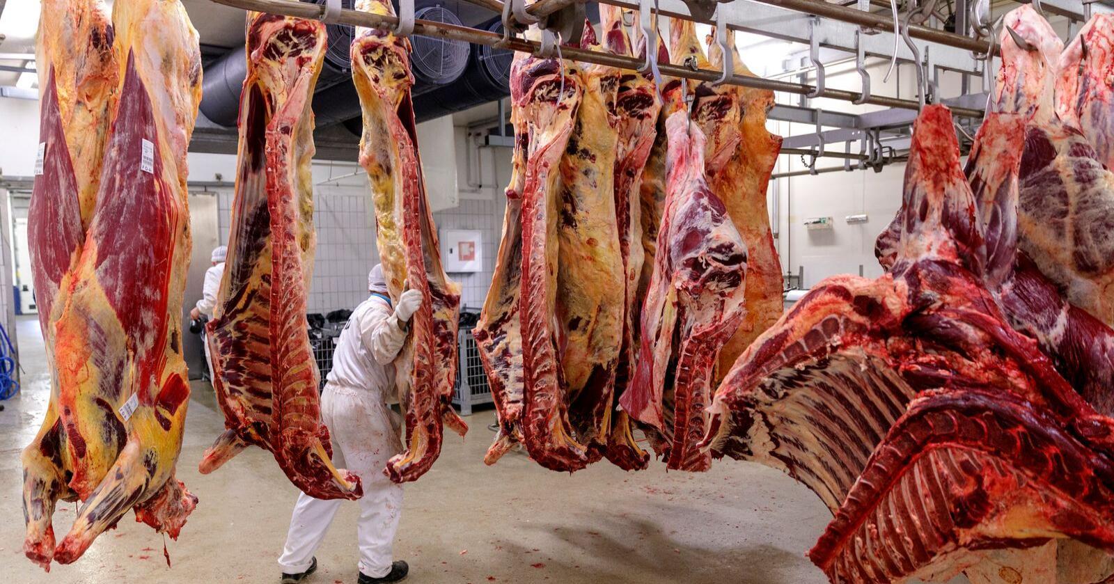 Folkehelseinstituttet har hjelpt kjøtindustrien med råd for korleis dei effektivt skal handheve smittevernreglane på fabrikkane. Illustrasjonsfoto: Cornelius Poppe / NTB scanpix / NPK