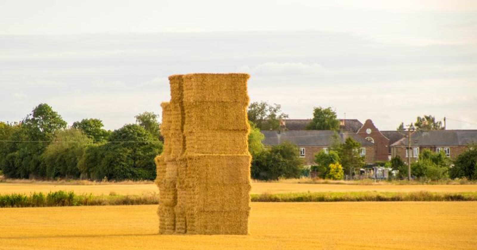 Nytt: – Etter nesten 50 år der vi har vært bundne til EU-regler som er utdaterte og som har vært en byrde, har vi nå muligheten til å skape en grønn Brexit, sier Michael Gove, miljø-, mat- og distriktsminister. (Foto: Andy Norris /Mostphotos)