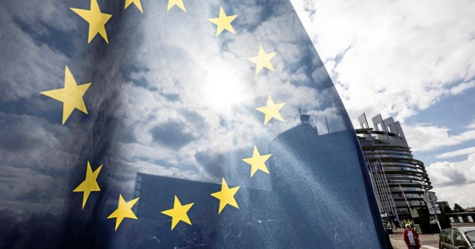 Uunværlig: EØS-avtalen er uunnværlig for et lite land som Norge, skriver innsenderne. Foto: AP/NTB scanpix